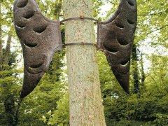 boom-oerkracht