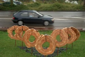 boomcirkels